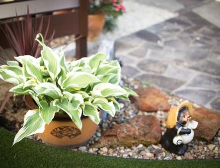 ライフスタイルの移り変わりに合わせたお庭をリフォーム、思い出の品も残しつつ暮らしに価値をプラスしたお庭